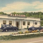 The Blossom Restaurant