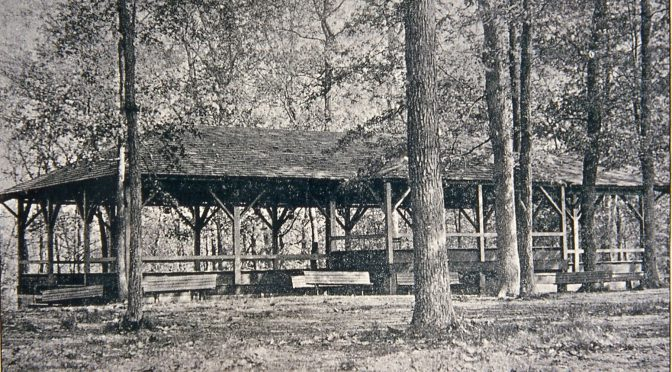 Pavilion in the Woods